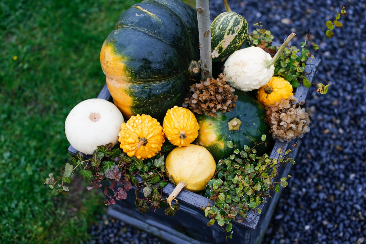 fall wedding pumpkins and squashes decoration