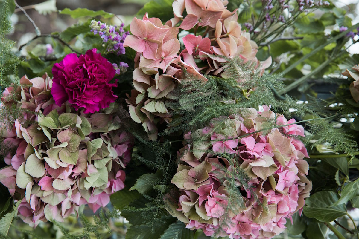 pastel hydrangeas for floral arch