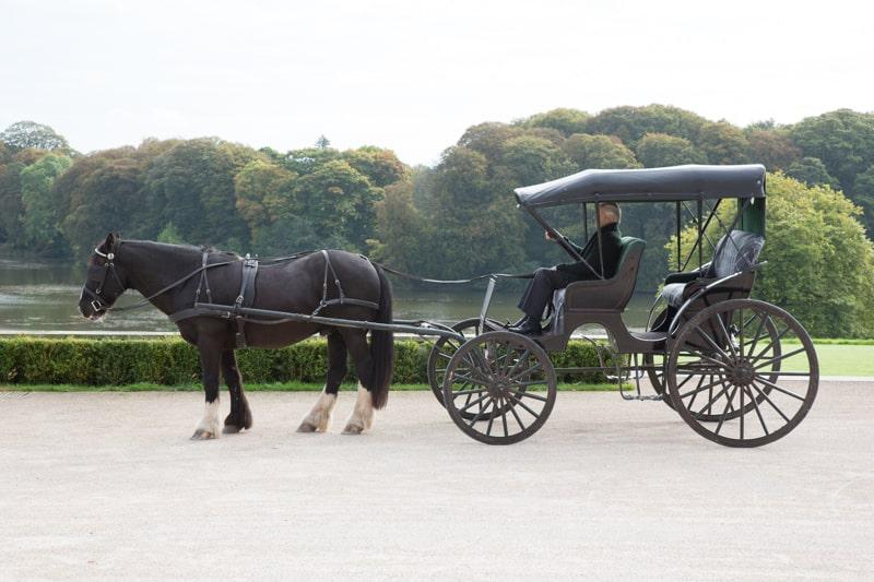 Ballyfin activities horse and carriage ride