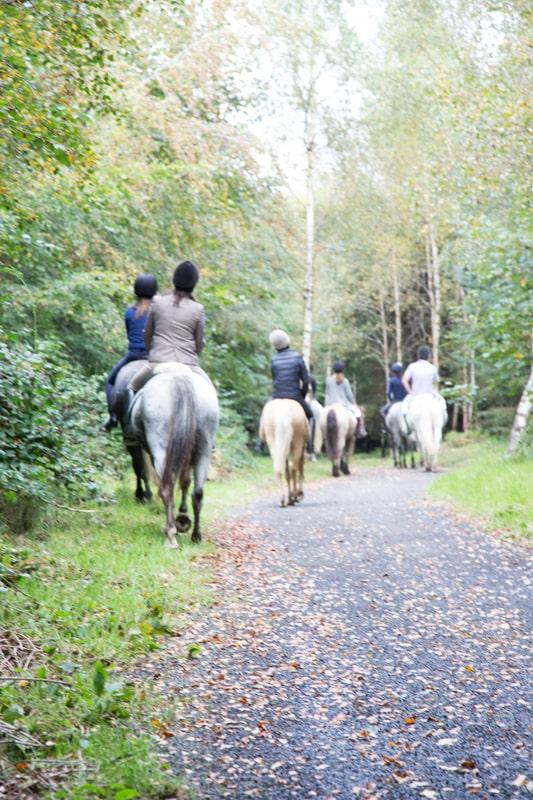 Ballyfin activities horse riding